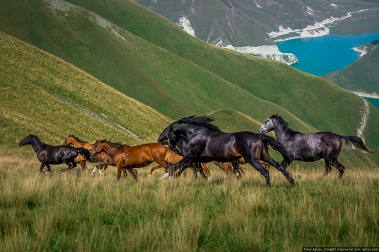 Lake Kezenoyam, North Caucasus, Russia, photo 15