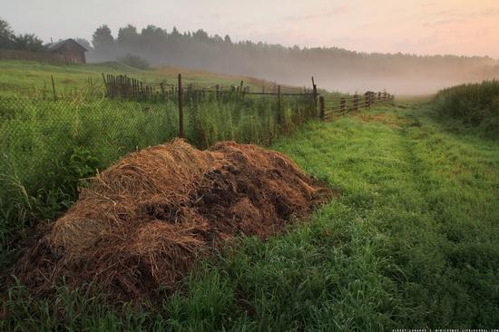 Rural landscapes, Yaroslavl region, Russia, photo 4