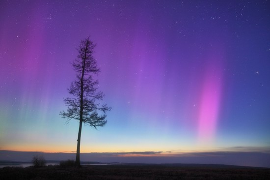 Multicolored aurora borealis, Sverdlovsk region, Russia, photo 17