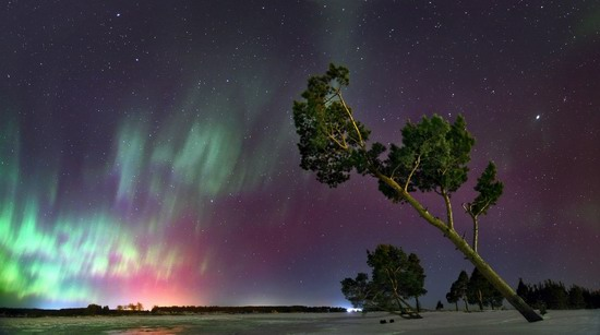Multicolored aurora borealis, Sverdlovsk region, Russia, photo 4