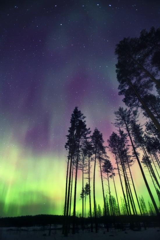 Multicolored aurora borealis, Sverdlovsk region, Russia, photo 6