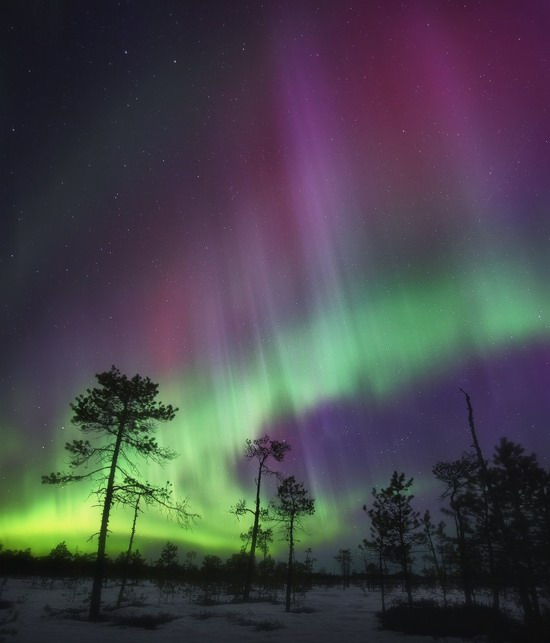 Multicolored aurora borealis, Sverdlovsk region, Russia, photo 7
