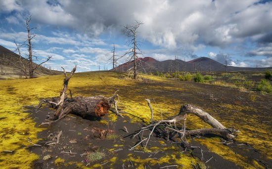 Alien landscapes of Tolbachik, Kamchatka, Russia, photo 11
