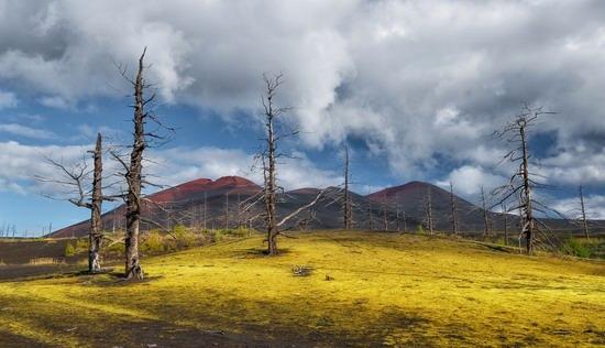 Alien landscapes of Tolbachik, Kamchatka, Russia, photo 12