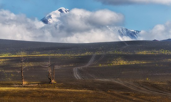 Alien landscapes of Tolbachik, Kamchatka, Russia, photo 13