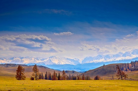 Altai region landscapes, Russia, photo 3