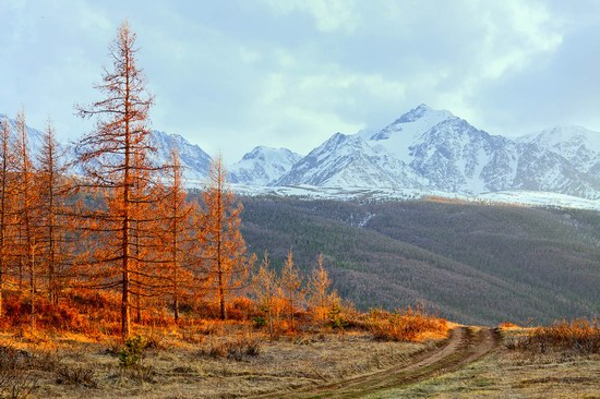 Altai region landscapes, Russia, photo 5