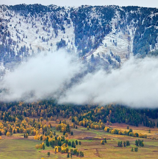 Altai region landscapes, Russia, photo 7