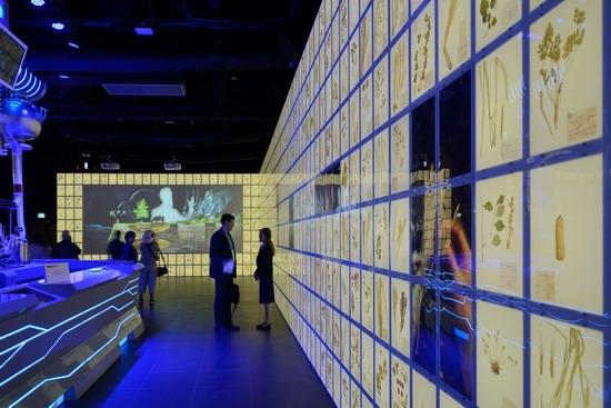 The Russian pavilion, Expo Milano 2015, photo 7