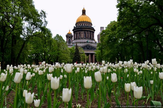 St. Isaac's Cathedral, Saint Petersburg, Russia, photo 6