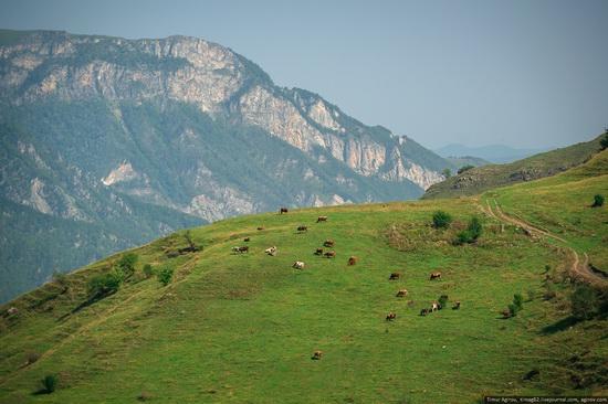 Mountainous Chechnya sights, Russia, photo 25
