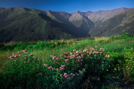 Mountainous Chechnya sights, Russia, photo 5