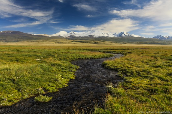 Ukok Plateau, Altai, Russia, photo 10