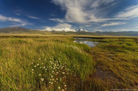 Ukok Plateau, Altai, Russia, photo 11
