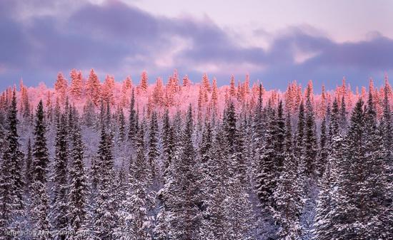 Stunningly beautiful scenery of the Kola Peninsula, Russia, photo 3