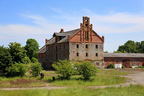 The sights of the Kaliningrad region, Russia, photo 9
