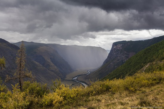 Chulyshman River Valley, Altai Republic, Russia, photo 1