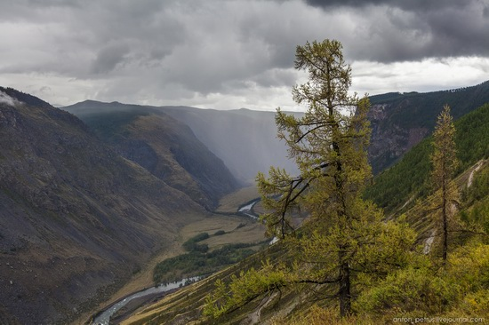 Chulyshman River Valley, Altai Republic, Russia, photo 2