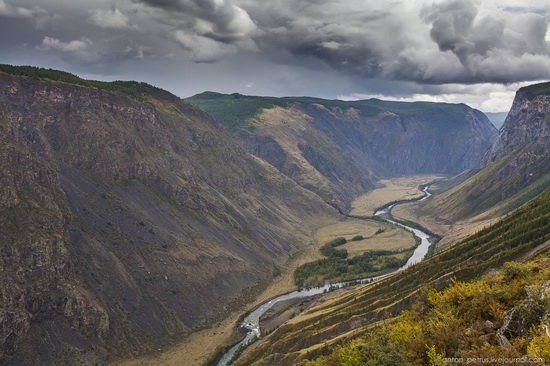 Chulyshman River Valley, Altai Republic, Russia, photo 4