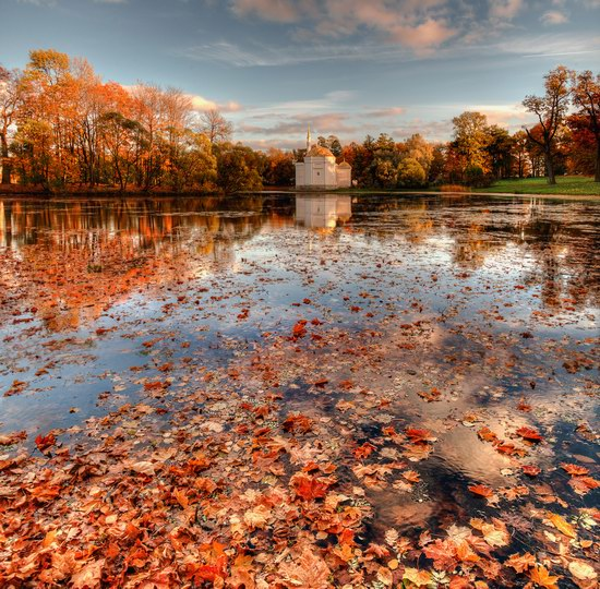 Golden Autumn in Tsarskoye Selo, St. Petersburg, Russia, photo 5