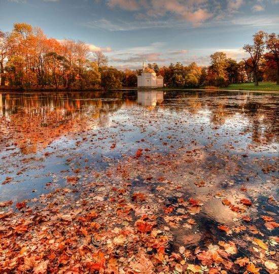 Golden Autumn in Tsarskoye Selo, St. Petersburg, Russia, photo 5