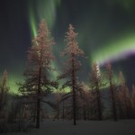 The Magic of the Russian North – Polar Lights near Novy Urengoy