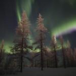 The Magic of the Russian North – Polar Lights near Novy Urengoy