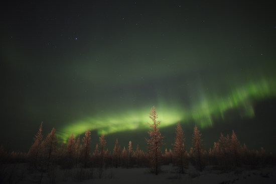 Polar Lights, Novy Urengoy, Russia, photo 10