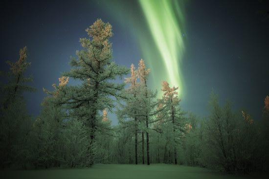 Polar Lights, Novy Urengoy, Russia, photo 11