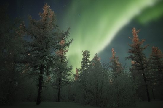 Polar Lights, Novy Urengoy, Russia, photo 12