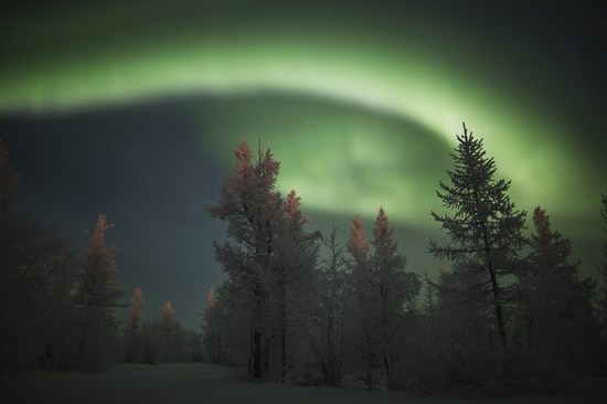 Polar Lights, Novy Urengoy, Russia, photo 13