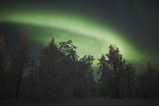 Polar Lights, Novy Urengoy, Russia, photo 16