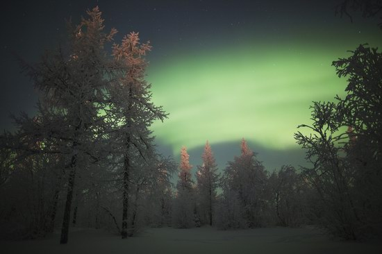 Polar Lights, Novy Urengoy, Russia, photo 17