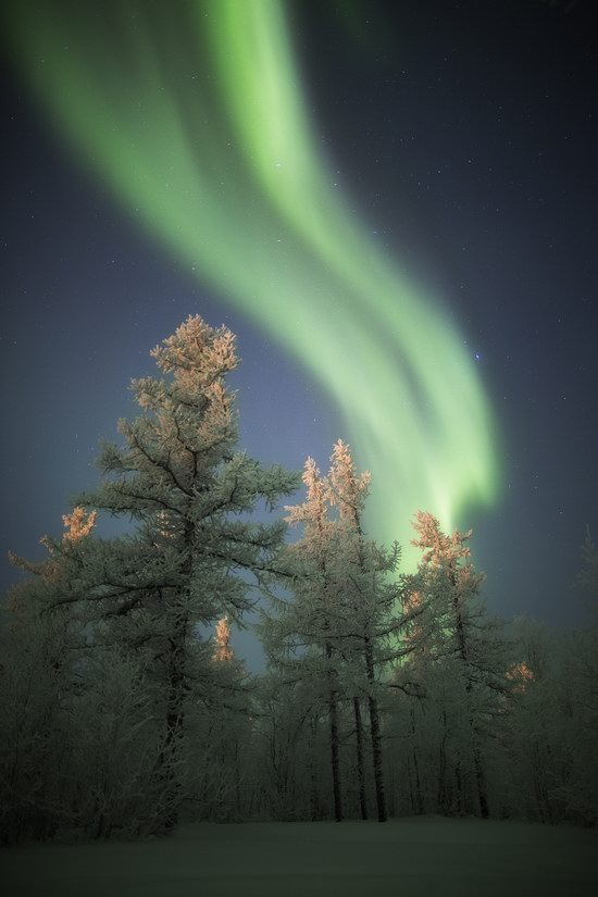Polar Lights, Novy Urengoy, Russia, photo 18
