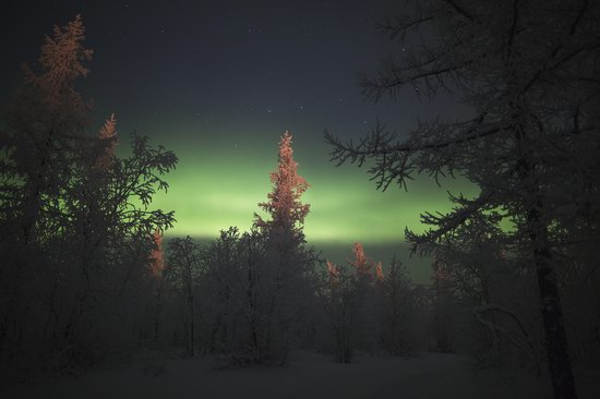 Polar Lights, Novy Urengoy, Russia, photo 19