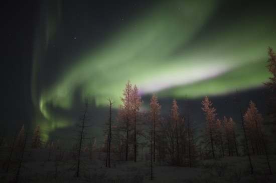 Polar Lights, Novy Urengoy, Russia, photo 2