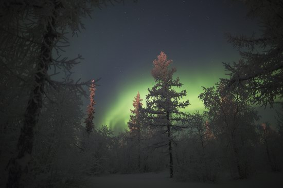 Polar Lights, Novy Urengoy, Russia, photo 20