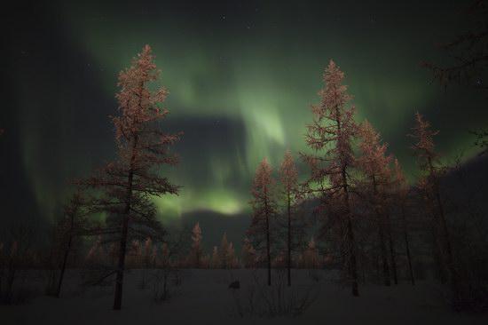 Polar Lights, Novy Urengoy, Russia, photo 3