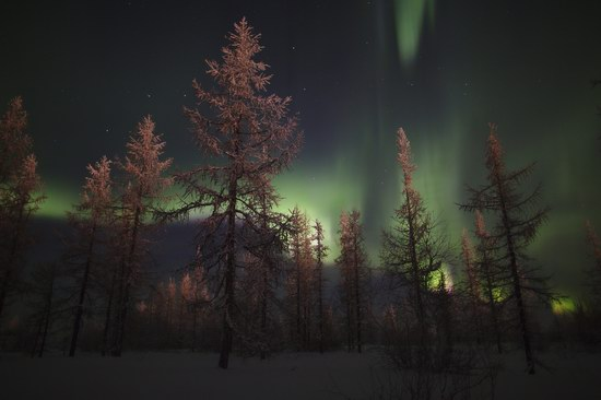 Polar Lights, Novy Urengoy, Russia, photo 4