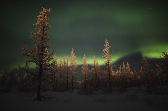 Polar Lights, Novy Urengoy, Russia, photo 7