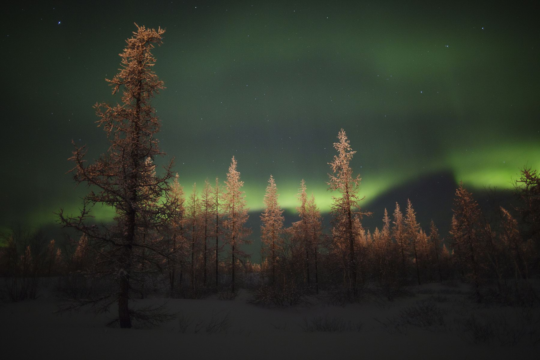Novy Urengoy Russia  city pictures gallery : ... Russian North – Polar Lights near Novy Urengoy · Russia travel blog