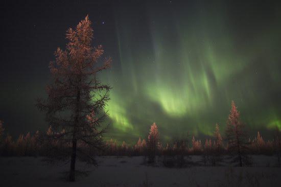 Polar Lights, Novy Urengoy, Russia, photo 8