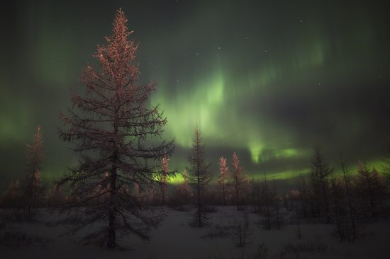 Polar Lights, Novy Urengoy, Russia, photo 9