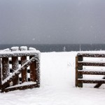 Snowy winter on Lake Teletskoye
