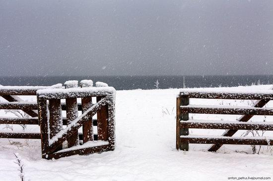 Snowy winter on Lake Teletskoye, Russia, photo 1