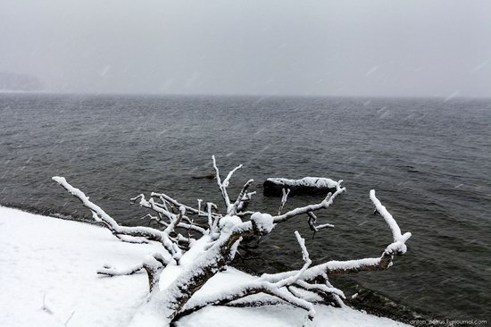 Snowy winter on Lake Teletskoye, Russia, photo 10