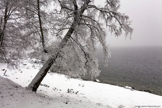 Snowy winter on Lake Teletskoye, Russia, photo 7