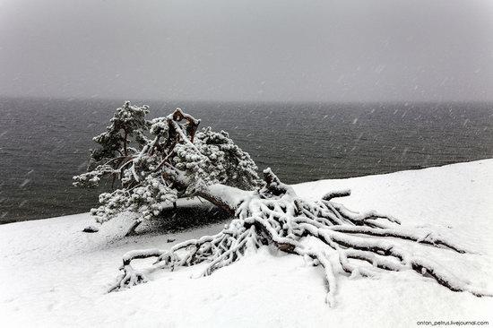 Snowy winter on Lake Teletskoye, Russia, photo 8