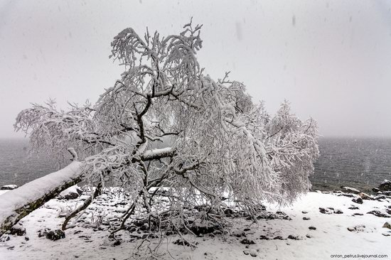 Snowy winter on Lake Teletskoye, Russia, photo 9