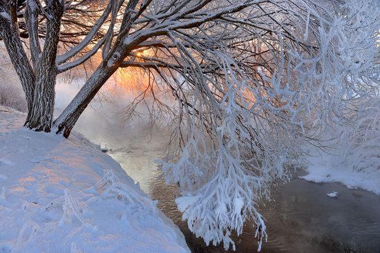 Frosty January on Murinskiy Stream, St. Petersburg, Russia, photo 6